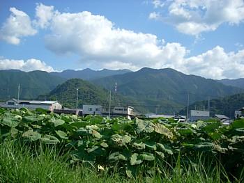 08_hujita_yama_2
