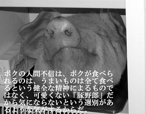 Sigeru_ton_mono003