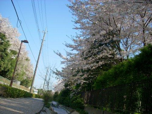 Higasioomiya_yuhodou003